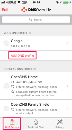 DNS-override-setting3
